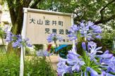 大山金井町児童遊園