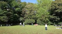 田園調布せせらぎ公園