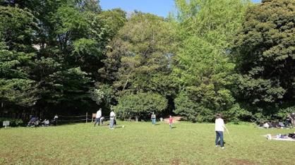 田園調布せせらぎ公園の画像1