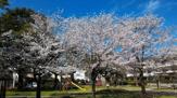 大膳町公園