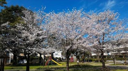 大膳町公園の画像1