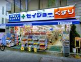 くすりセイジョー 大岡山店