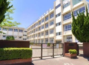 新宿小学校の画像1