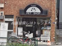 犬猫の店ぱろ 四谷店