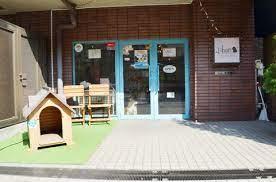 ペットサロンLibon 上野店の画像1