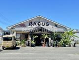 エスニックマーケットバグース(BAGUS)