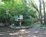 豊島区立小鳥がさえずる公園