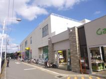 ザ・ダイソー 松戸大橋店