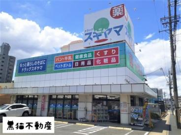 ドラッグスギヤマ 石川橋店の画像1