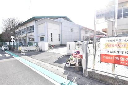 鹿児島市立西紫原小学校の画像3