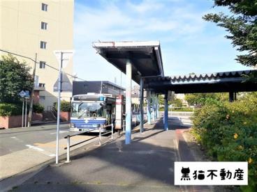 名古屋市バス 地下鉄植田停の画像1