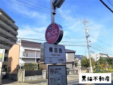 名古屋市バス 植田西停の画像1