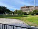美野島公園