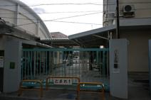 杉並区立和田小学校