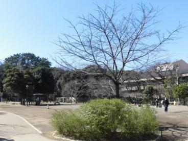 国立科学博物館附属自然教育園の画像1