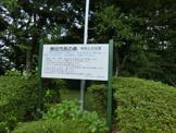 勝田市民の森