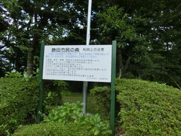 勝田市民の森の画像1