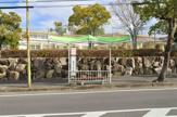 橋本小学校停(京阪バス)