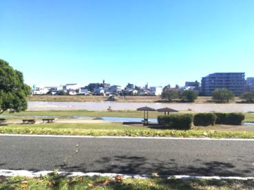 河川敷中央公園の画像1