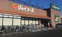 ジョイフーズ高崎西店