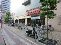 大丸ピーコック 石川台店