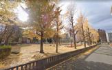 日之出公園