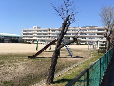 吉川市立吉川小学校の画像1