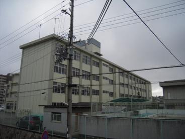 枝吉小学校の画像2