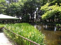 塚山公園運動場
