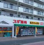 スギ薬局東寺尾店