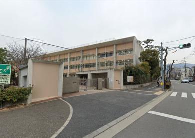 芦屋市立精道小学校の画像1