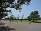 遠州灘海浜公園 中田島北地区