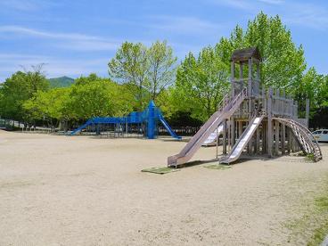 奈良教育大学附属小学校の画像4