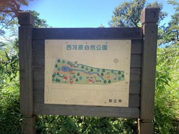 西河原自然公園の画像3