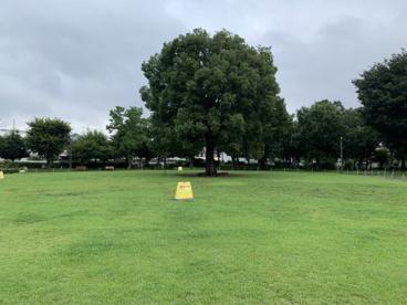 前原公園の画像3
