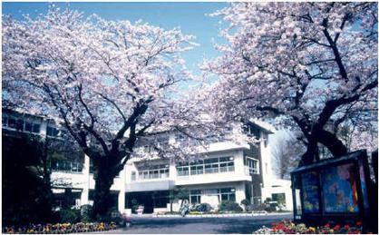 成田小学校の画像1
