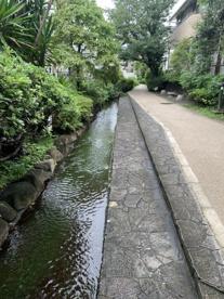 岩戸川せせらぎの画像4