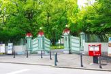 奈良女子大学大学院