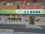 神山動物病院