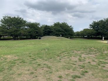 世田谷区立きたみふれあい広場の画像3