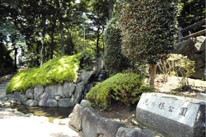 滝の根公園の画像1