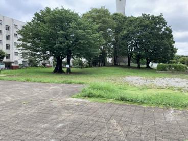 大公園の画像3