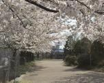 NHK技研 遊歩道