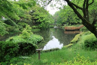道保川公園の画像1