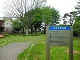 広野緑地公園