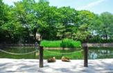 赤塚溜池公園