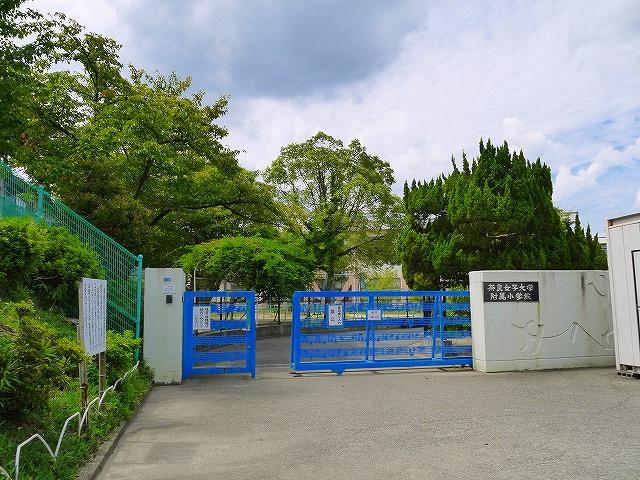 奈良女子大学附属小学校の画像