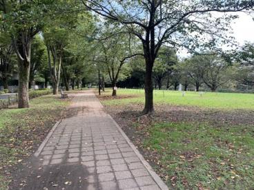 野川緑地広場の画像2