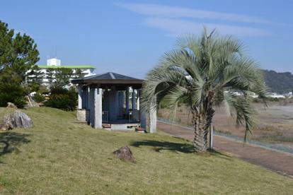 種崎干松公園の画像1