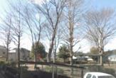 緑町西公園